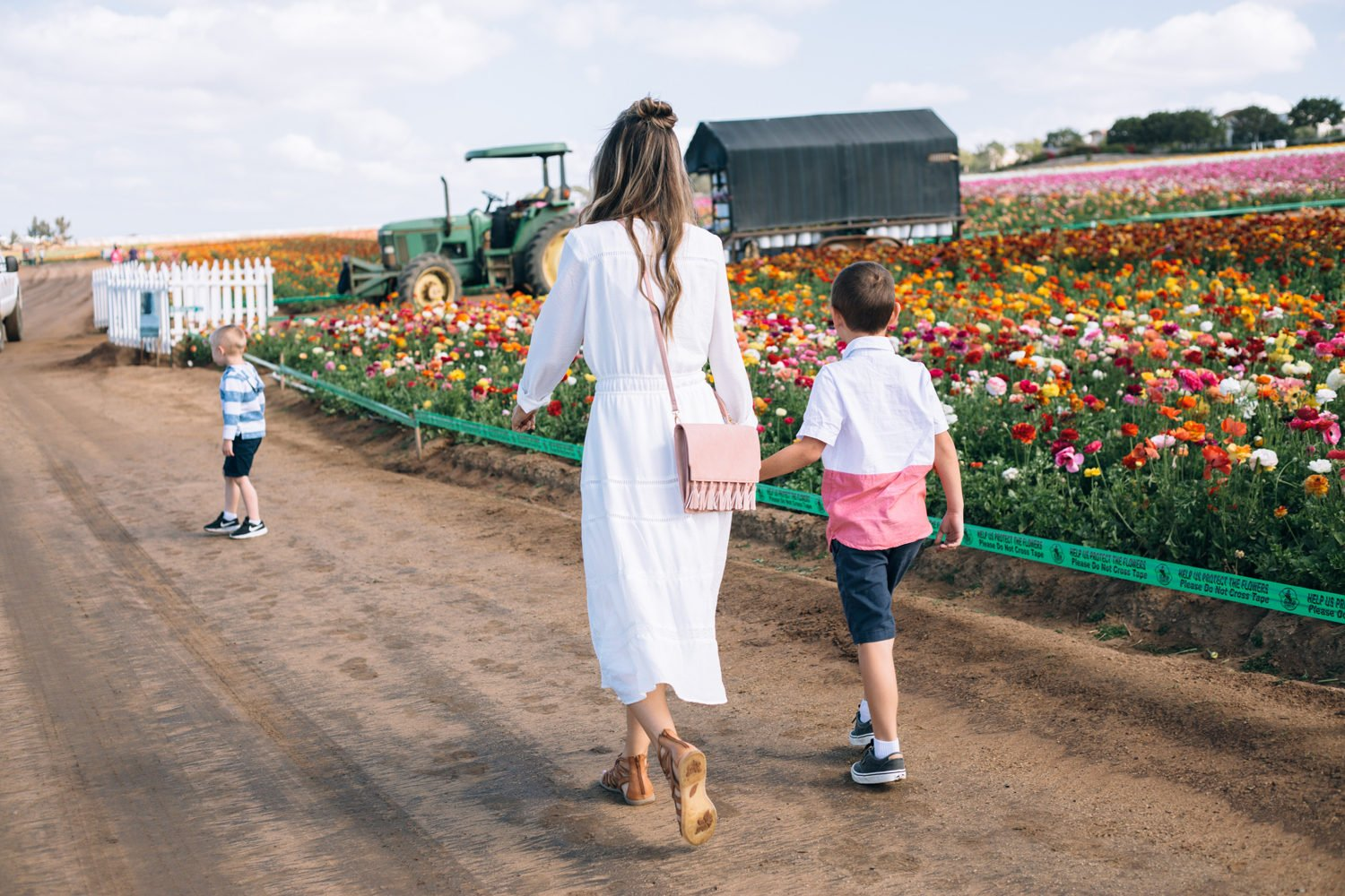 Merrick's Art | Carlsbad Flower Fields with Born