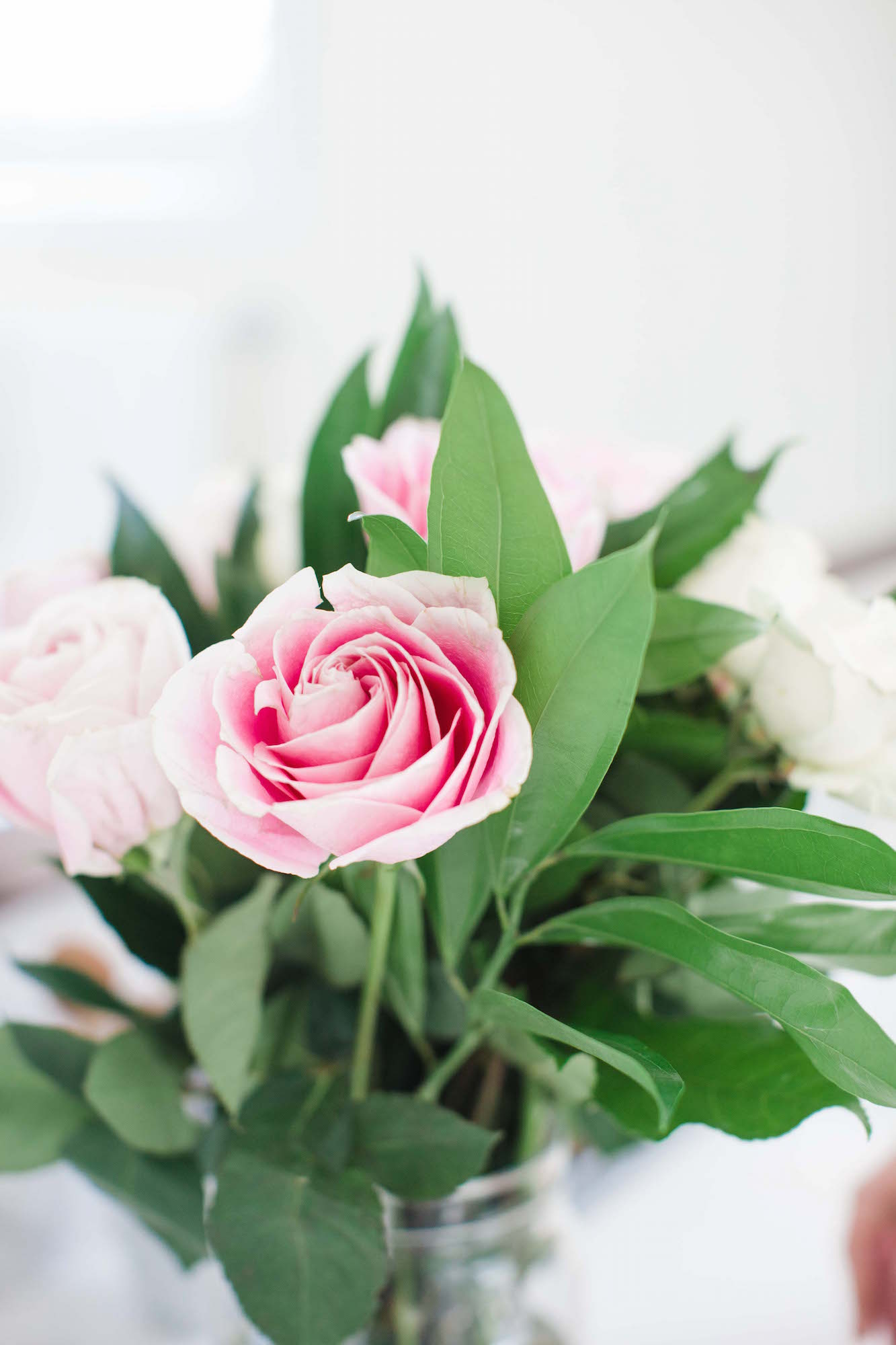 Merrick's Art Pink roses