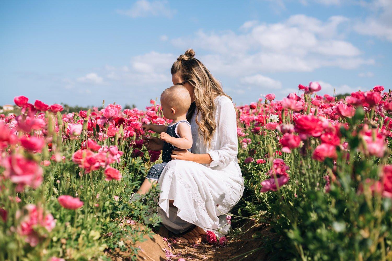 Merrick's Art   Spring Pink Flowers