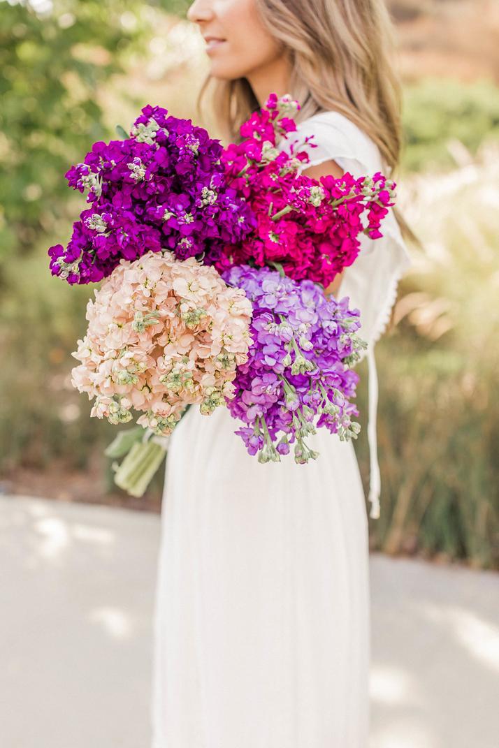 gorgeous stock flowers | merricksart.com