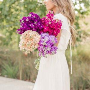 stock flowers |merricksart.com