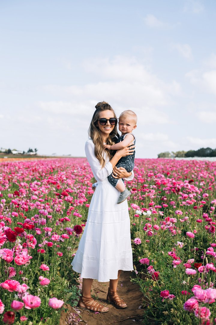 baby in the flower fields