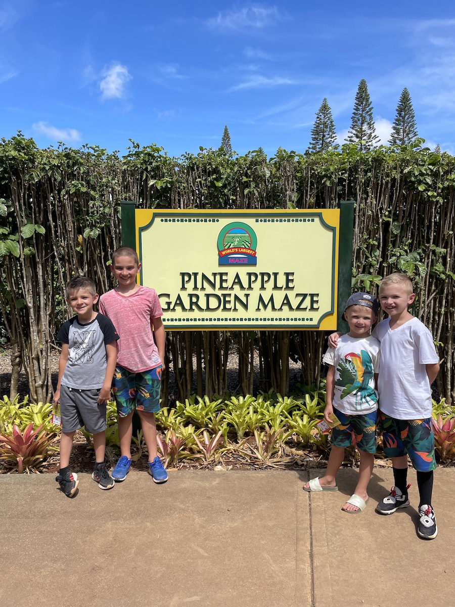 hawaii dole plantation